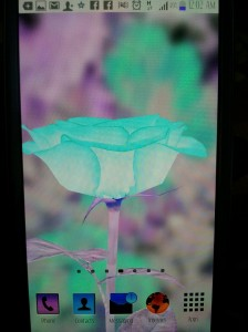 2013 01 30 00.02.21 224x300 - Fix Nagative Display Problem In Samsung Galaxy S3