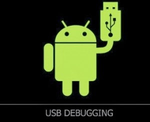 android usb debugging1 300x244