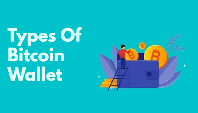 Bitcoin Wallets Before Choosing the Best